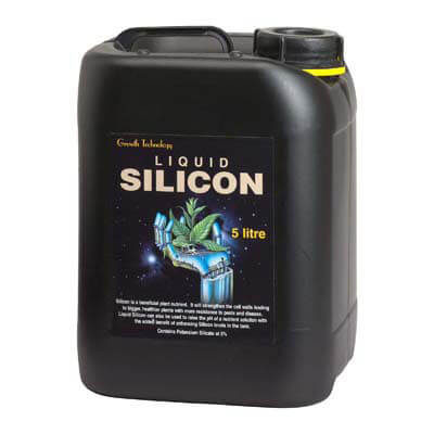 Growth tech Silicon