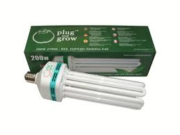 Replacement CFL Bulbs
