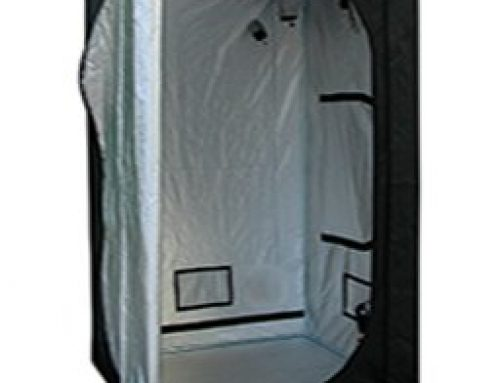 4 Important Factors to Consider When Choosing a Grow Tent – What to Know